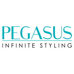 "Storming Europe and the USA, <strong>Pegasus</strong> hairdressing combs redefine styling. Combined with revolutionary Flexinite technology, Pegasus is styling at its best. Flexinite Smart Comb Technology creates seamless teeth which are sensitive to changing temperatures, mimicking hair and flexibly moving in response to heat and chemicals. The result? No damage to hair.&nbsp;See other <a href=""/brands"" title=""brands"" class=""redline"">brands</a>&nbsp;we carry."